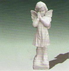 kipovi6